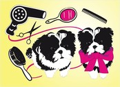 Cute Dogs Beauty Salon