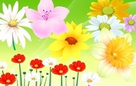 Colorful Flower Vector 2