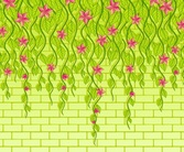 Fresh green vine background