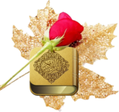 gold Quran + rose PSD
