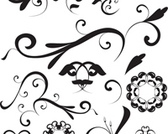 Floral Shapes and Ornaments