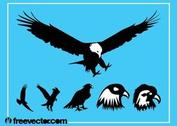 Eagles silhouet Graphics