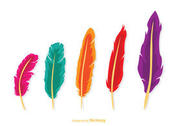 Isolated Feather Vector Pack