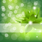 Green Bokeh Abstract Leaves Background