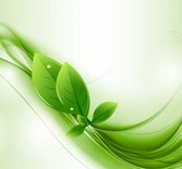 Eco Leaves & Green Waves Abstract Background