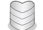 Heart Shaped Vector Database Icon