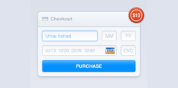 Credit Card Payment Checkout Widget