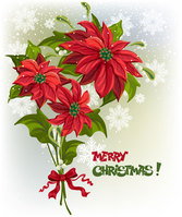 Flower Christmas vector-2