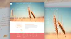 Organic - Free Website PSD Template