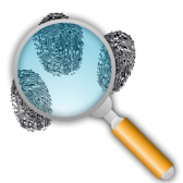 Fingerprint Search with Slight Magnification