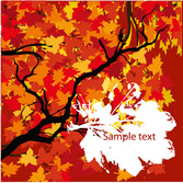 Beautiful Golden Autumn Leaves - Vector Prime