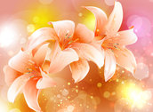Colourful pattern flower background
