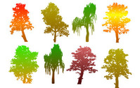 Colorful Tree Silhouettes