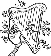 Harp And Branch