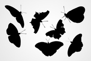 Vector Butterfly Silhouettes (Free)