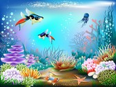 Magnificent Underwater World 02