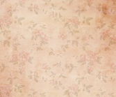 Vintage Background 4 PSD
