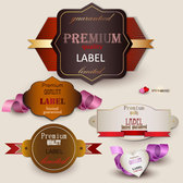 The exquisite label design vector-4