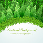 Xmas Card with Floral & Branches