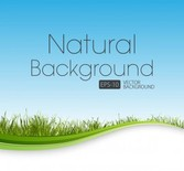 Nature background with grass and waves