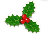 Christmas holly berries icon (PSD)