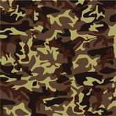 MILITARY CAMOUFLAGE VECTOR.eps