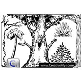 TREE COLORING BOOK GRAPHICS.eps