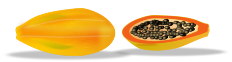 papaya sliced