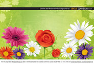 Daisies and Roses Flower Background