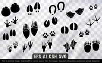 18 Vector animal footprint
