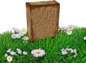 blank tombstone in grass PSD