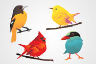 Bird Vector Clip Art (Free)