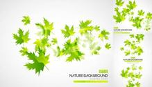 Abstract Green Autumn Leaves Background