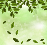 Green branches halo background
