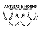 ANTLER BRUSHES & HORNS BRUSHES