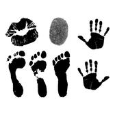 HUMAN PRINTS VECTOR PACK.eps