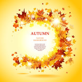 Beautiful autumn leaves card vector-2