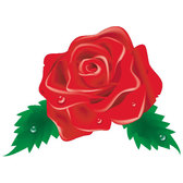 RED ROSE VECTOR CLIP ART IMAGE.eps