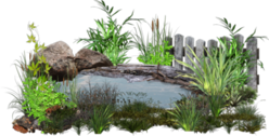 Water Pond PSD