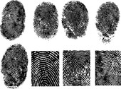 Fingerprint Vector 1