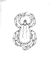 Tick image for clip art (UNCLASSIFIED)