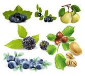 Fruits, Blueberries, Pears, Pistachios, Chestnuts