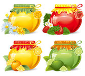 Beautifully canned fruit 02