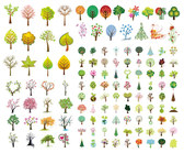 Variety Of Trees