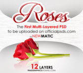 Roses [OP First Multi Layered PSD] PSD