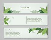 Green Leaves Banners Set Design