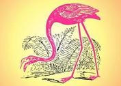 Flamingo Sketch