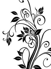 Exquisite Black-And-White Pattern
