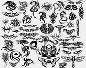 Stock Illustrations Dragon-Tattoo-Vector