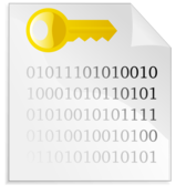 Encrypted file icon